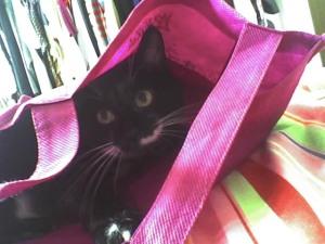 Siggy pink sack